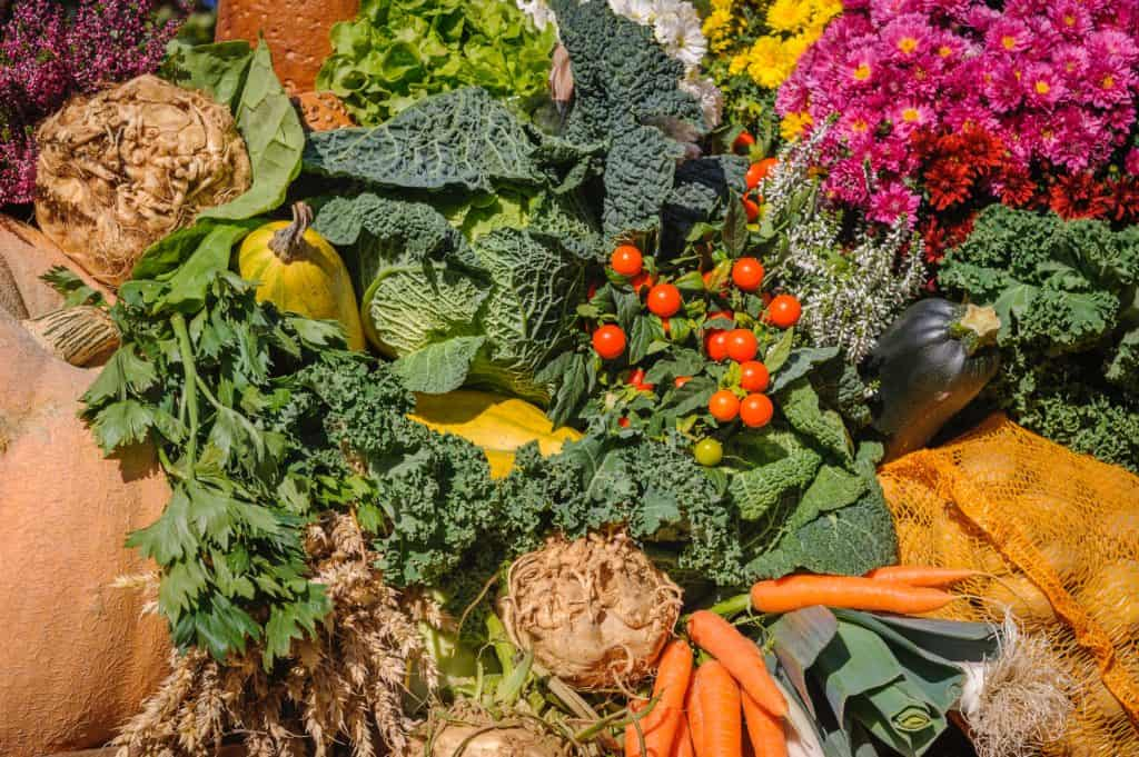 A close up of many different vegetables on display